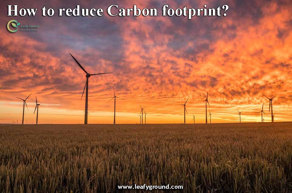 How to reduce Carbon footprint